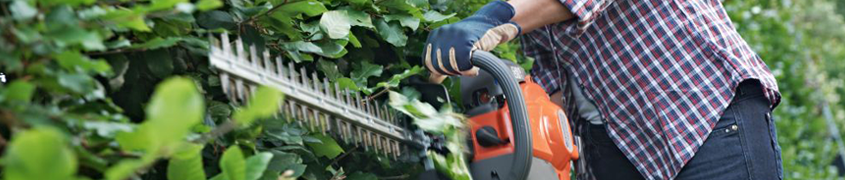 Petrol Hedge Trimmers