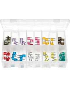 Blade Fuses Mini Assortment