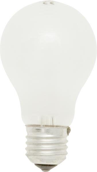 Rough Service Bulbs Eddison Screw 240V 60W